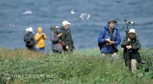 Older generation enjoying birdwatching