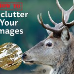 How To: Declutter Your Images