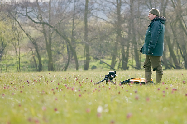Photographing a wildflowers in Oxforshire