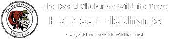 Help support The David Sheldrick Wildlife Trust our choosen charity